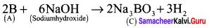 Samacheer Kalvi 12th Chemistry Solutions Chapter 2 p-Block Elements - I img-47