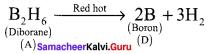 Samacheer Kalvi 12th Chemistry Solutions Chapter 2 p-Block Elements - I img-57