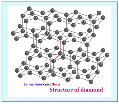 Samacheer Kalvi 12th Chemistry