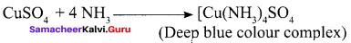 Samacheer Kalvi 12th Chemistry Solutions Chapter 3 p-Block Elements - II img-11