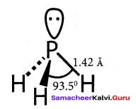 Samacheer Kalvi 12th Chemistry Solutions Chapter 3 p-Block Elements - II img-20