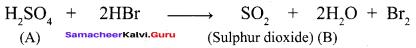Samacheer Kalvi 12th Chemistry Solutions Chapter 3 p-Block Elements - II img-65