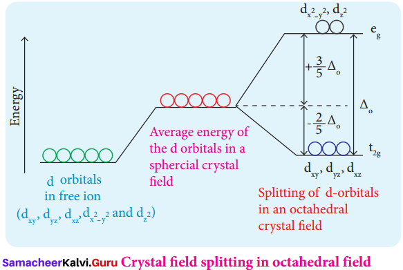 Samacheer Kalvi 12th Chemistry Solutions Chapter 5 Coordination Chemistry-10