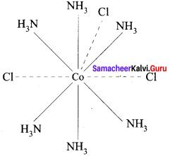 Samacheer Kalvi 12th Chemistry Solutions Chapter 5 Coordination Chemistry-11