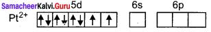 Samacheer Kalvi 12th Chemistry Solutions Chapter 5 Coordination Chemistry-81