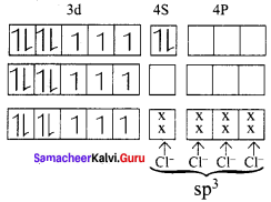 Samacheer Kalvi 12th Chemistry Solutions Chapter 5 Coordination Chemistry-31