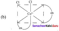 Samacheer Kalvi 12th Chemistry Solutions Chapter 5 Coordination Chemistry-5.1