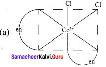 Samacheer Kalvi 12th Chemistry Solutions Chapter 5 Coordination Chemistry-5