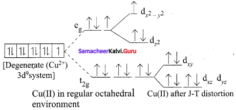 Samacheer Kalvi 12th Chemistry Solutions Chapter 5 Coordination Chemistry-6