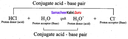 Samacheer Kalvi 12th Chemistry Solutions Chapter 8 Ionic Equilibrium-25