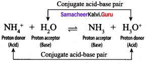 Samacheer Kalvi 12th Chemistry Solutions Chapter 8 Ionic Equilibrium-56