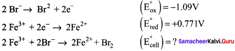 Samacheer Kalvi 12th Chemistry Solutions Chapter 9 Electro Chemistry-59