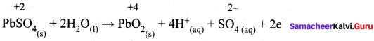 Samacheer Kalvi 12th Chemistry Solutions Chapter 9 Electro Chemistry-54