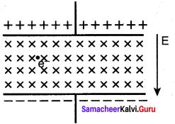 Samacheer Kalvi Guru 12th Physics Chapter 3