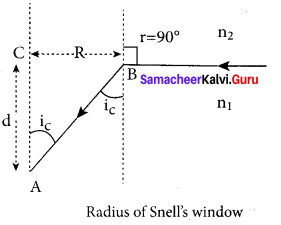 Samacheer Kalvi 12th Physics Solutions Chapter 6 Optics-16