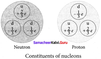 Samacheer Kalvi 12th Physics Solutions Chapter 8 Atomic and Nuclear Physics-22