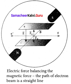 Samacheer Kalvi 12th Physics Solutions Chapter 8 Atomic and Nuclear Physics-5