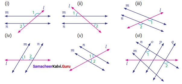 Samacheer Kalvi 7th Maths Solutions Term 1 Chapter 5 Geometry Ex 5.2 1