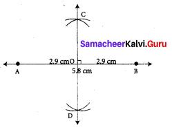 Samacheer Kalvi 7th Maths Solutions Term 1 Chapter 5 Geometry Ex 5.3 56