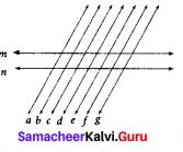 Samacheer Kalvi 7th Maths Solutions Term 1 Chapter 5 Geometry Intext Questions 24
