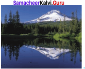 8th Standard Light Lesson Chapter 3 Light Samacheer Kalvi