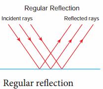 8th Science Solutions Samacheer Kalvi Chapter 3 Light