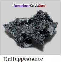8th Science Matter Around Us Guide Samacheer Kalvi Solutions Term 1
