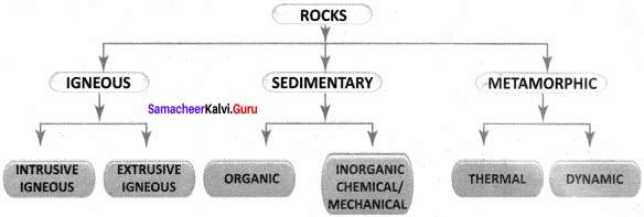 Samacheer Kalvi 8th Social Science Geography Term 1 Solutions Chapter 1 Rock and Soil 5