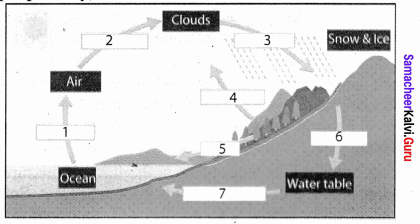 Samacheer Kalvi 8th Social Science Geography Term 1 Solutions Chapter 3 Hydrologic Cycle 2