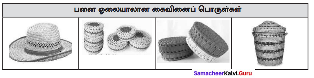 Samacheer Kalvi 8th Tamil Solutions Chapter 5.3 நாட்டுப்புறக் கைவினைக் கலைகள் 2