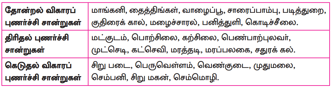 Samacheer Kalvi 8th Tamil Solutions Chapter 6.5 புணர்ச்சி 2
