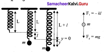 Tamil Nadu 11th Physics Model Question Paper 3 English Medium 17