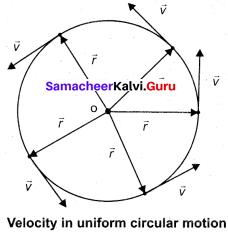 11 Samacheer Physics Solutions