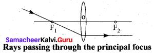 Samacheer Kalvi 10th Science Model Question Paper 3 English Medium image - 4