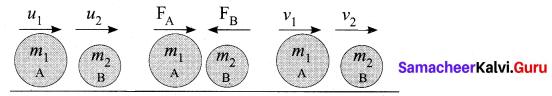 Samacheer Kalvi 10th Science Model Question Paper 5 English Medium image - 2