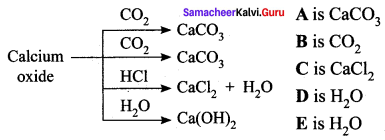 Samacheer Kalvi 10th Science Solutions Chapter 10 Types of Chemical Reactions 22