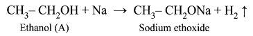Samacheer Kalvi 10th Science Solutions Chapter 11 Carbon and its Compounds 22