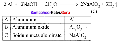 Samacheer Kalvi 10th Science Solutions Chapter 8 Periodic Classification of Elements 12