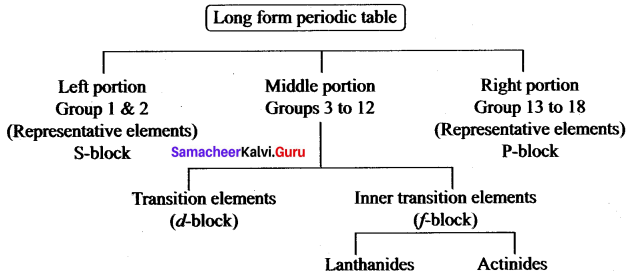 Samacheer Kalvi 10th Science Solutions Chapter 8 Periodic Classification of Elements 13