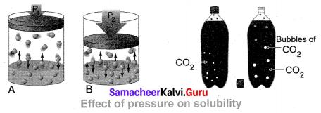 Samacheer Kalvi 10th Science Solution Chapter 9