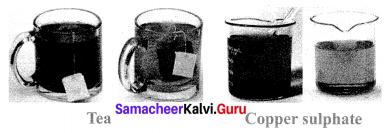 Science Solution Class 10 Samacheer Kalvi Chapter 9