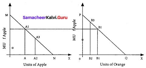 11th Economics Answers Samacheer Kalvi