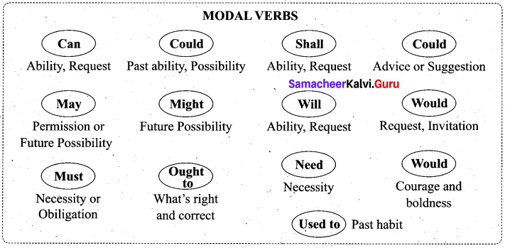 Samacheer Kalvi 11th English Solutions Prose Chapter 2 The Queen of Boxing 5