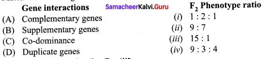 Samacheer Kalvi 12th Bio Botany Solutions Chapter 2 Classical Genetics img 5