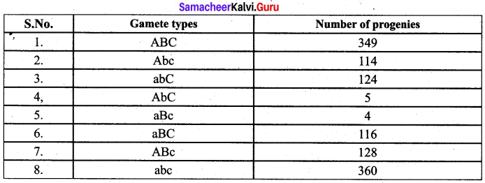 Samacheer Kalvi 12th Bio Botany Solutions Chapter 3 Chromosomal Basis of Inheritance img 4