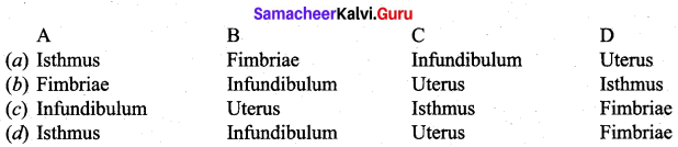 Samacheer Kalvi Guru 12th Biology Chapter 2