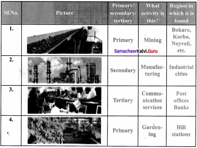 Samacheer Kalvi Guru 6th Social Science Book Back Answers Chapter 1 Resources