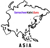 Samacheer Kalvi 6th Social Science Geography Solutions Term 3 Chapter 1 Asia And Europe image - 2