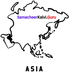 Samacheer Kalvi 6th Social Science Geography Solutions Term 3 Chapter 1 Asia And Europe image - 4