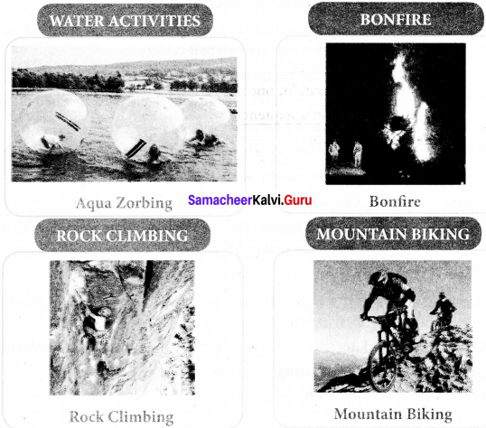 Adventures Of Don Quixote Questions And Answers Pdf Samacheer Kalvi 7th English